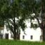 Casa rural voltada d'arrossars.  Situada a 2,5km del nucli urbà de Sant Jaume d'Enveja.
