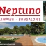 2a. Categoria Neptuno