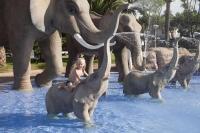 Fotografia de la piscina tematitzada 'Caribbean Jungle'. Una piscina on els  més petits de la família gaudiran com mai.