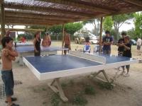 Taules de ping pong