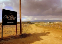 Pels camins del Penedes, terra de vinyes vins i cava.