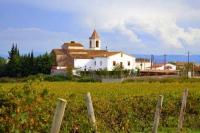 Santa Maria de Bellver. La Tardor entre vinyes.