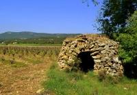 Barraca de pedra seca i vinya.