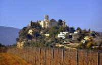 Castell de Sant Martí Sarroca.