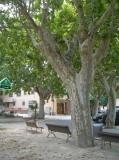 Plaça de Subirats