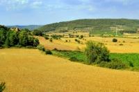 Vista de la zona rural de la Llacuna.