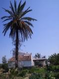 Casa tocant al riu Ebre cuina menjador, dues habitacions, dos banys, es pot menjar al rafal.