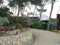 Passejant pels 'Jardins Cap Roig' a Calella de Palafrugell. Els seus orígens es remunten al 1927.