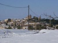 nevada març 2010