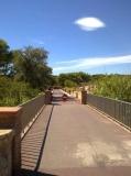 Camí de Ronda de les Muscleres Grosses a la platja Rec del Molí, rehabilitat.
