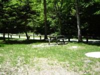 Zona de picnic a l'Artiga de lin