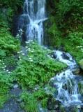cascada al curs del riu Toran