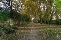 Camins de la Ribera de Solsona