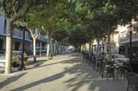 Un dels passeigs del municipi de Solsona