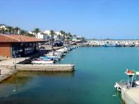 Llotja de Les Cases i Port pesquer.