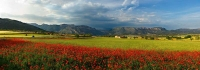 panoràmica de primavera a les rodalies de Camarassa, al fons la serra del Montroig