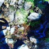 Torrent Helena, camí de Planoles a Dòrria GR11, Toses