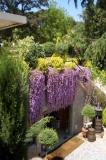 Restaurant envoltat de jardins