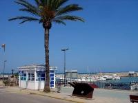 Oficina Municipal de Turisme i Port esportiu (Les Cases d'Alcanar)